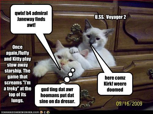 """qwix! b4 admiral Janeway finds awt! here comz Kirk! weere doomed Once again,Fluffy and Kitty play stow away starship. The game that screams """"i'm a treky"""" at the top of its lungs. U.SS. Voyager 2 gud ting dat awr hoomans put dat sine on da dresur."""