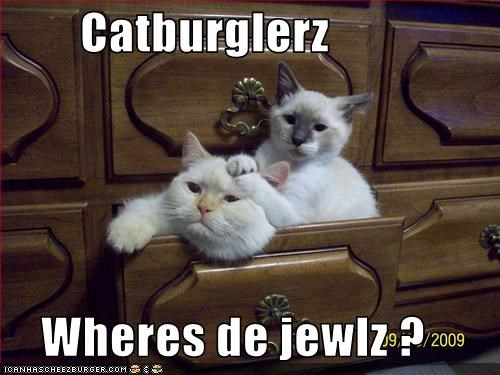 Cheezburger Image 2664611840