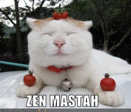 tomatoes w00t zen - 2664837888
