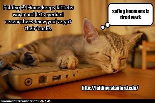 http://folding.stanford.edu/ safing hoomans iz tired werk Folding @ Home keeps kittehs warm and lets medical researchers know you've got their backs.