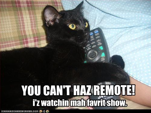 YOU CAN'T HAZ REMOTE!