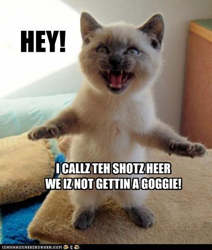 HEY! I CALLZ TEH SHOTZ HEER WE IZ NOT GETTIN A GOGGIE!
