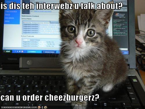 Cheezburger Image 2673133568