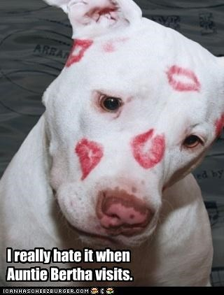 aunt,hate,kissing,lipstick,pitbull,visit