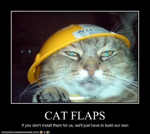 CAT FLAPS If you don't install them for us, we'll just have to build our own