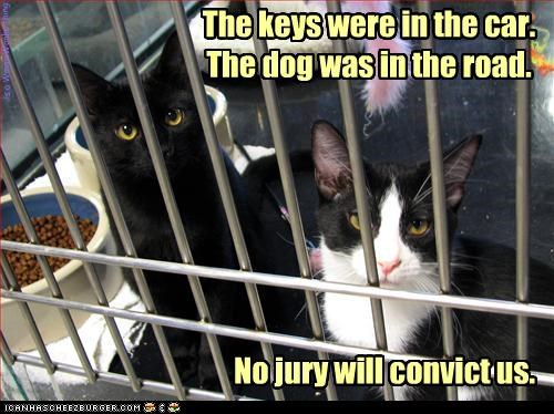 Prolly not. The keys were in the car. The dog was in the road. No jury will convict us. is a WinnieWonka thing