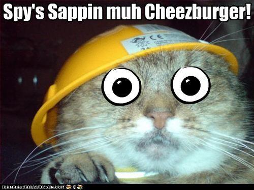 Cheezburger Image 2682330880