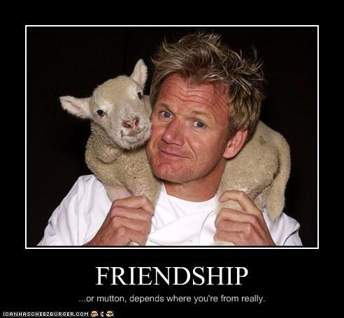 FRIENDSHIP ...or mutton, depends where you're from really.