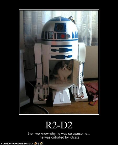 kitten movies r2d2 Starwars - 2684790784