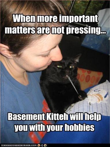 basement cat helping knitting - 2686167296