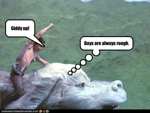 Giddy up! Days are always rough.