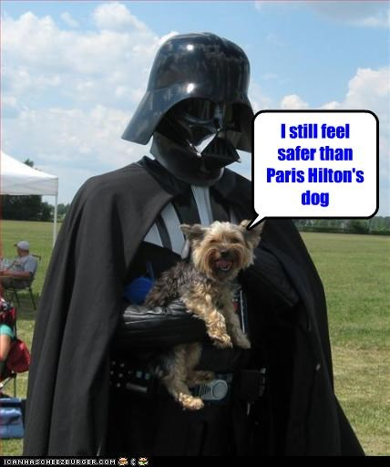 darth vader dogs paris hilton safe - 2687988224