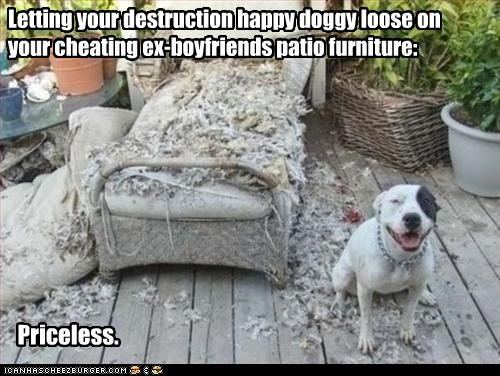 Letting your destruction happy doggy loose on your cheating ex-boyfriends patio furniture: Priceless.