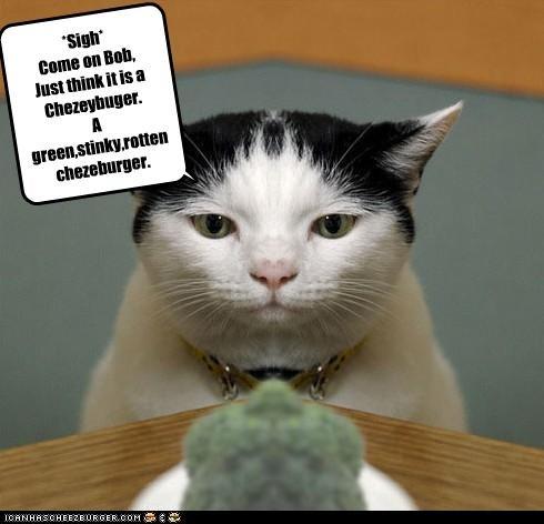 Cheezburger Image 2689127424