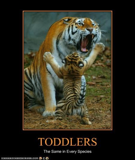TODDLERS The Same in Every Species