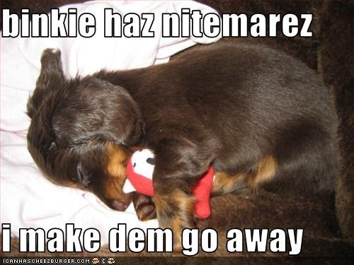 dachshund,hug,nightmare,scared,sleeping,stuffed toy