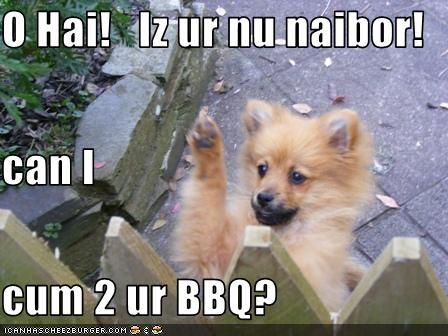 Cheezburger Image 2693318912