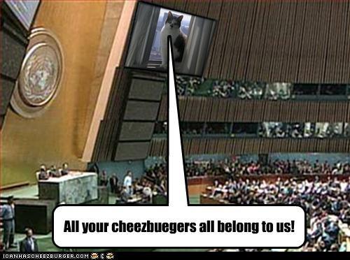 Cheezburger Image 2693351168