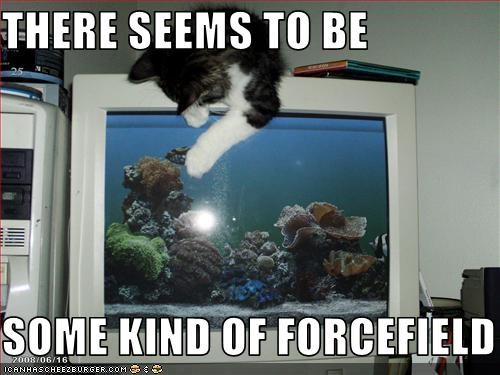 computer fish forcefield want - 2693575936