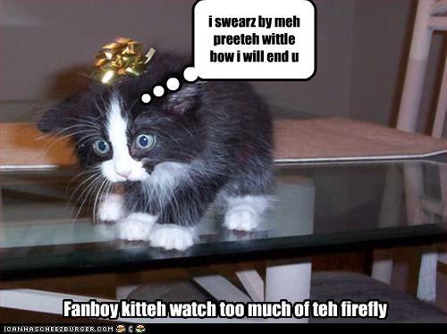 i swearz by meh preeteh wittle bow i will end u Fanboy kitteh watch too much of teh firefly