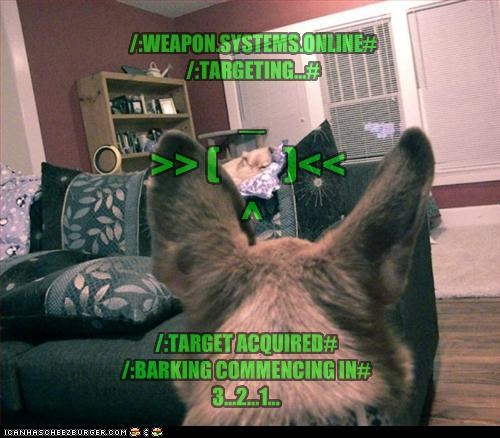 german shepherd,online,targeted,terminator,weapons
