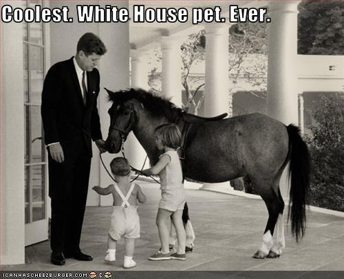 caroline kennedy,democrats,Historical,john-f-kennedy,john-f-kennedy-jr,pets,president,White house