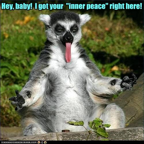 hey baby i got your inner peace right here cheezburger