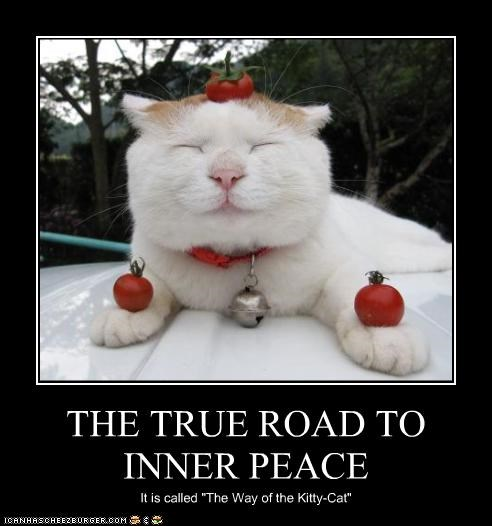 The True Road To Inner Peace Cheezburger Funny Memes Funny Pictures