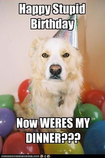 Happy Stupid Birthday Now WERES MY DINNER???