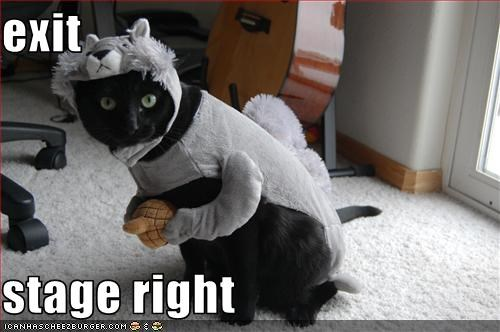 Cheezburger Image 2698603520