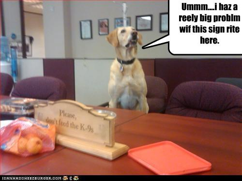 dont feed labrador Office problem signs