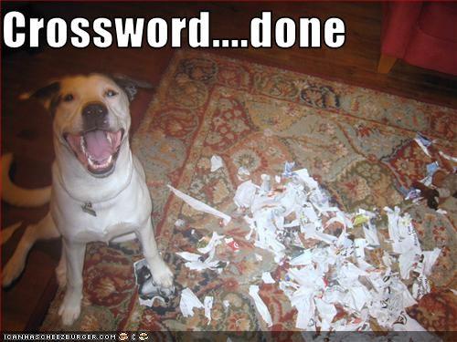 crossword newspaper paper pitbull puzzles shredding - 2701666816