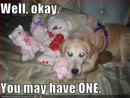 greedy labrador share stuffed animal stuffed toy - 2702437888