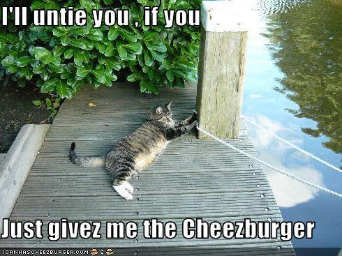 Cheezburger Image 2702755840