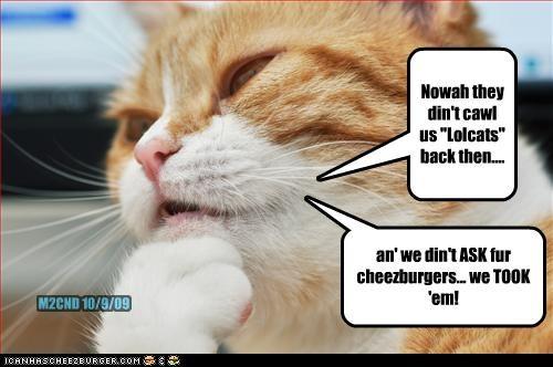 Cheezburger Image 2703087872