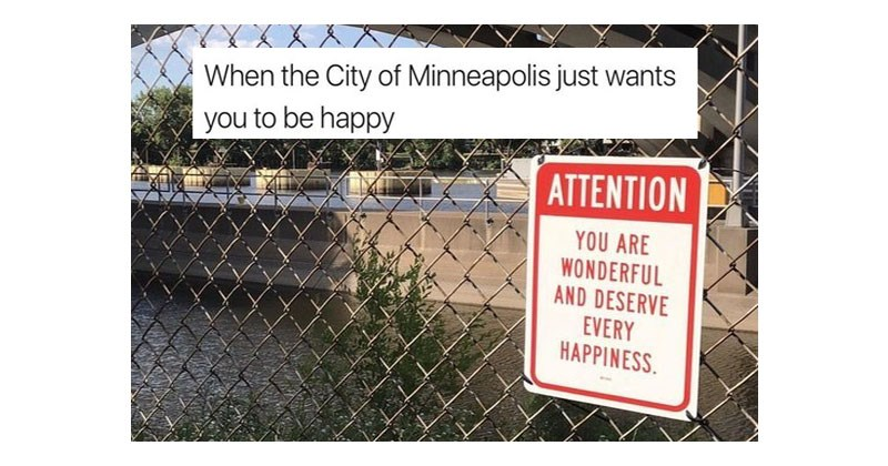 Collection of funny and wholesome memes about life, happiness, animals, friendship, books, dinosaurs, art.