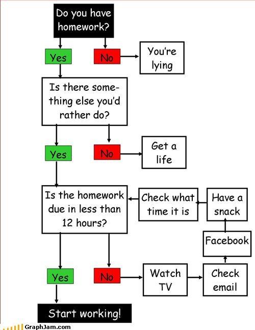 flow chart homework school - 2705787392