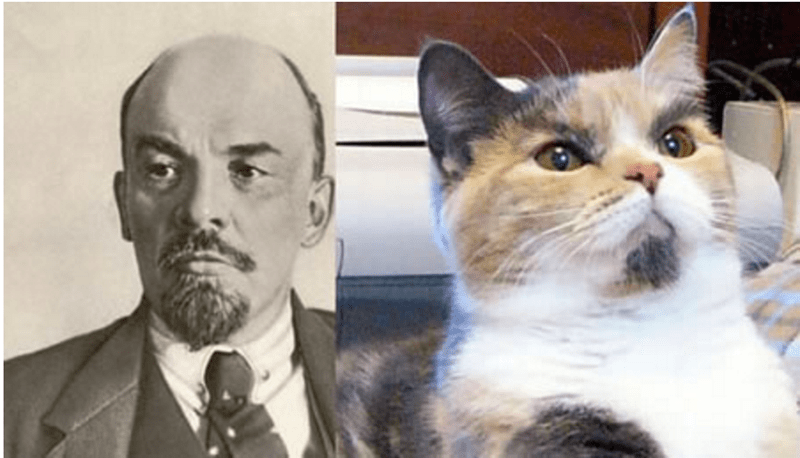 A photo of a horrible dictator and a cat on the side that strikes a resemblance to him - cover for cats that look like dictators