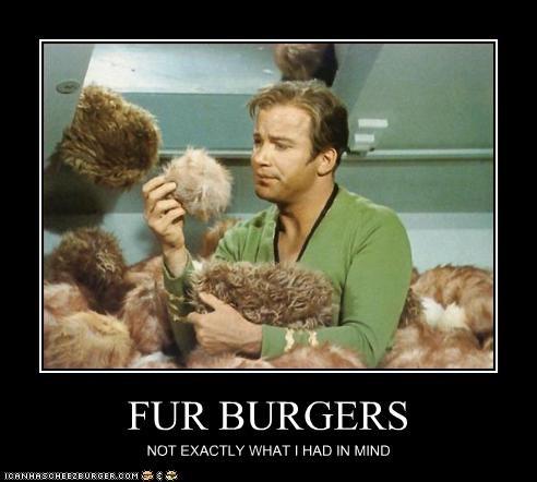 Cheezburger Image 2708573184