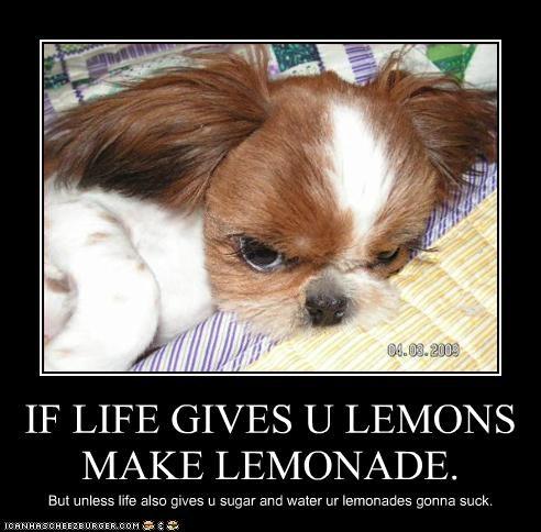 IF LIFE GIVES U LEMONS MAKE LEMONADE. But unless life also gives u sugar and water ur lemonades gonna suck.