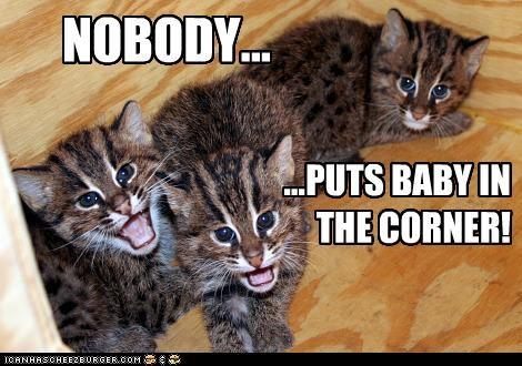 NOBODY... ...PUTS BABY IN THE CORNER!