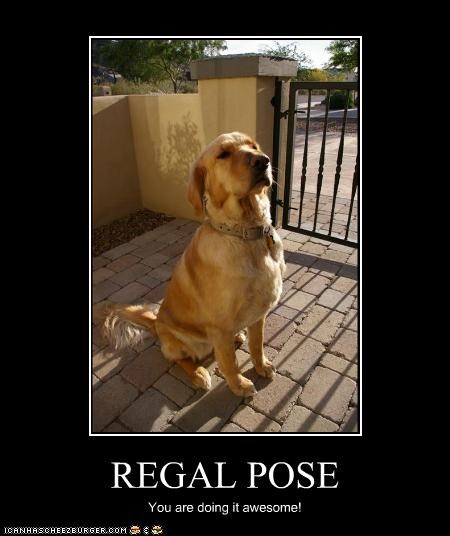 REGAL POSE You are doing it awesome!