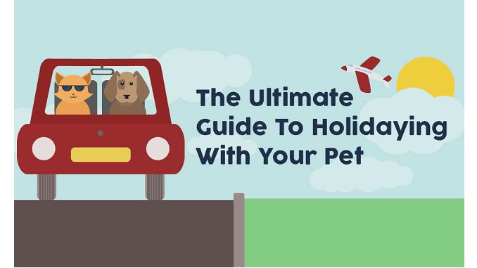 illustrated guide for travelling with pets