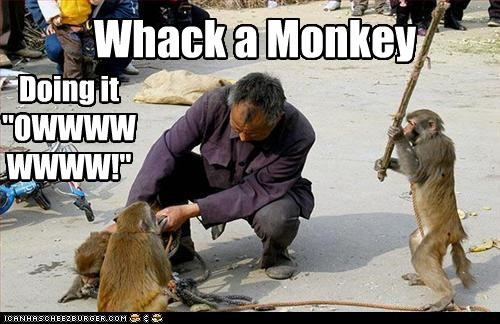 "Whack a Monkey Doing it ""OWWWWWWWW!"""