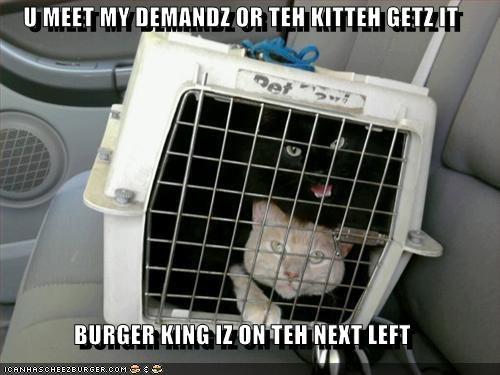 Cheezburger Image 2720800768