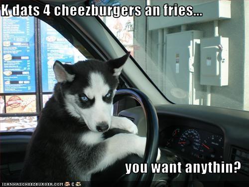 Cheezburger Image 2721970432