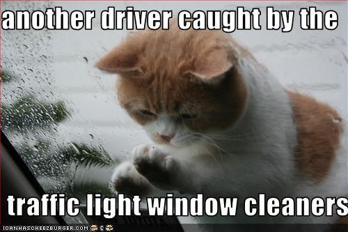 car helping window - 2726152192
