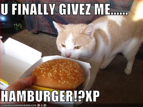 Cheezburger Image 2729235968