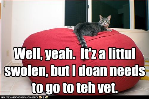 Well, yeah.  It'z a littul swolen, but I doan needs to go to teh vet.