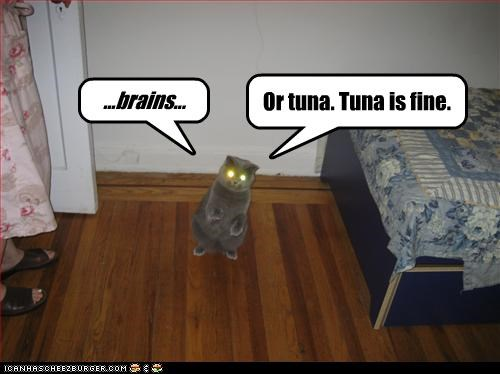 brains,Hall of Fame,LOLs To Go,tuna,want,zombie apocalypse